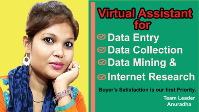 Do Data Entry Data Scraping and all types of VA Job for 2 hours