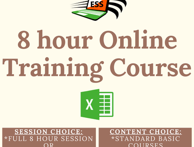 Provide 8 hours of Microsoft Excel training online