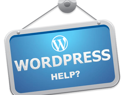 Provide WordPress help & support