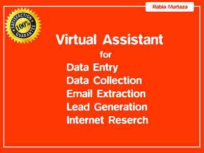 Provide 1-day Data collection, lead generation, data entry task