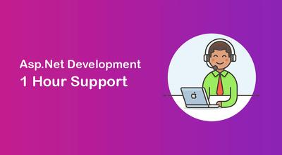 Provide 1-hour of .net Development
