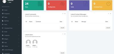 Readymade Blog & News Custom PHP Site