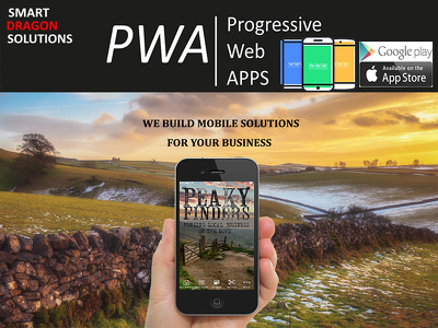 I can build your Business a Website, Web App or a native App