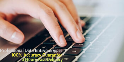 Do any kind of Professional Best Data Entry 7 Pages Same Day
