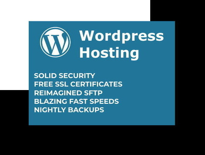 Wordpress website hosting for 1 year