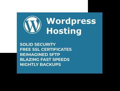 Wordpress website hosting for 1 year