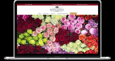 create a Responsive Wordpress Website Design or Blog Website