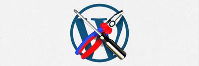 Get any WordPress Customization, issue/Problem fixed