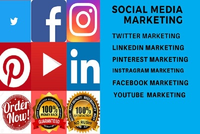Do social media marketing and manage for 30 days