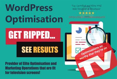 Optimise Your WordPress SEO | RIPPED from Zero to Hero