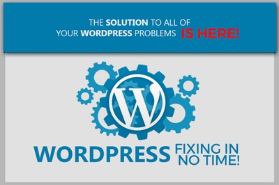 Bugs fixing and 1 hour customisation in WordPress