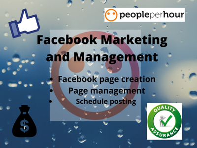 Do Facebook Marketing and  Page Management for 3 days