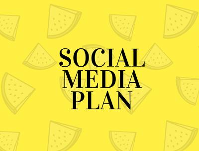 Provide a Social Media Strategy Plan