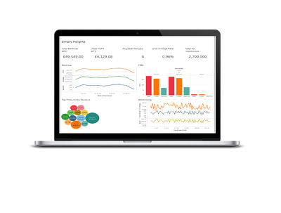 Bespoke KPI reporting/dashboard for your business
