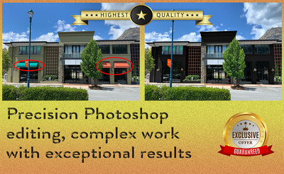 Perform precision image editing, 2 images