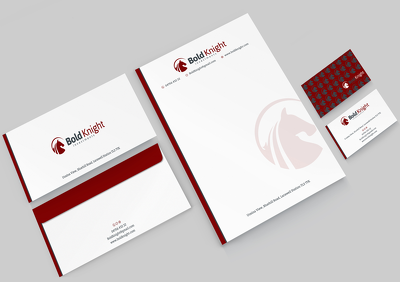 Erect clean and professional Brand Identity.