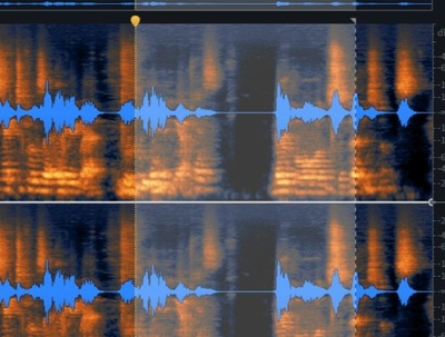 Clean and Enhance your Recording Quality  (up to 15 mins)