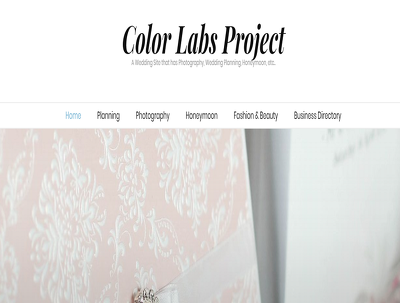 Guest Post on Wedding/Lifestyle Blog -ColorLabsProject.com
