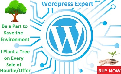 Build Responsive, SEO Optimized & Fast Loading WordPress Website
