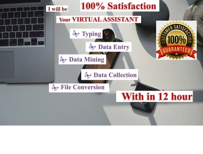 I will do fastest 2 hours data entry within 12 hours