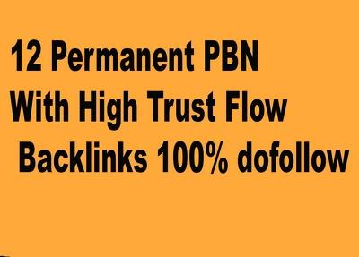 12 Permanent PBN With High Trust Flow Backlinks 100% dofollow