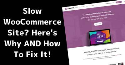 Fix woocommerce issue in 4 hours