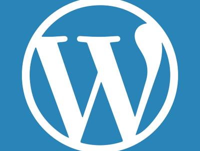 Can fix wordpress problem/Issue