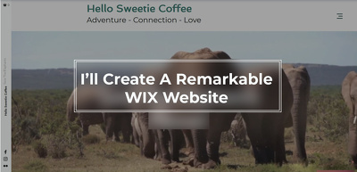 Build you a remarkable WIX website