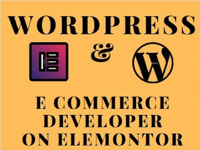 Design and redesign ecommerce and wordpress website