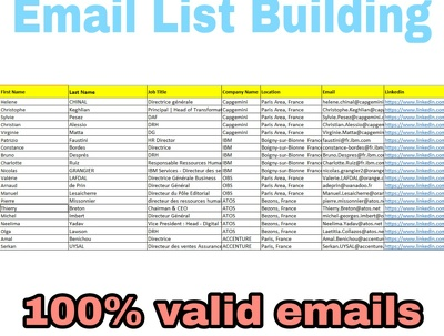 Collect 100% valid 200 leads of any person domain emails