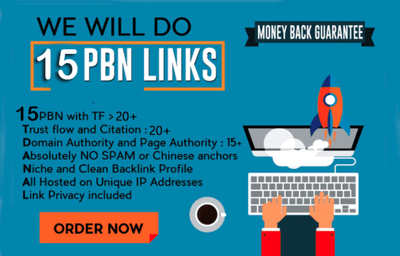 Create 15 permanent pbn posts on high metrics domains