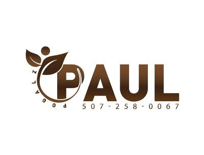 Design high quality logo for you