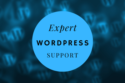 Install a WordPress Theme with Demo Content