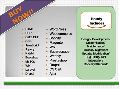 Do 1 hour of Customizations/migration/Updates in your website