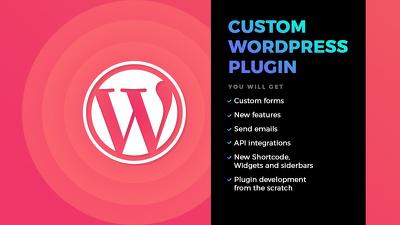 Do custom WordPress plugin development
