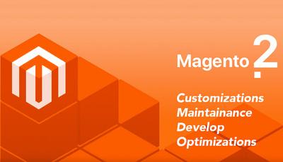 1 hour update/customize/bug fix Magento 2 site