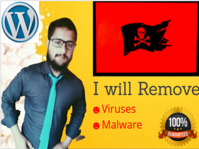 Remove malware from your wordpress website in 24 hours