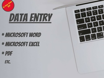 Do data entry tasks in Microsoft Word, Excel or PDF for 1 hour
