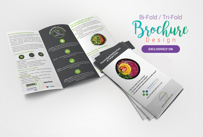Design modern trifold brochure or flyer