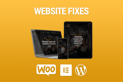 Provide 1 Hour of Fixes or Maintenance to WordPress Website