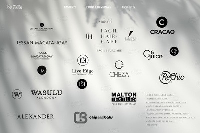 Design high-quality professional logo type + many extras