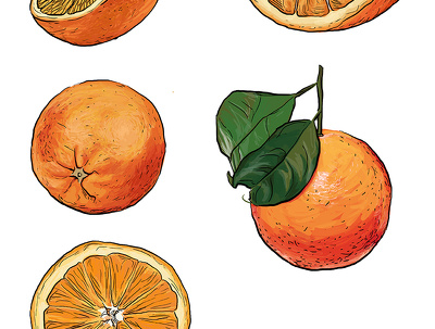 Draw you a food illustration in this style