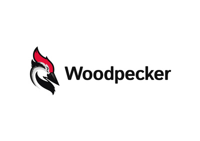 Build a COLD OUTREACH/DRIP campaign flow on Woodpecker/Quickmail