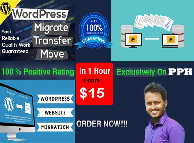 Migrate wordpress website or move, transfer, backup in 1 hour