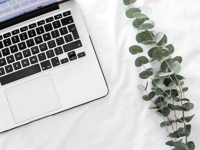 Provide one hour of WordPress development or fix