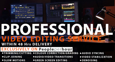 Provide you Professional Video Editing