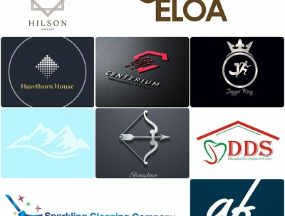 Make professional Logo with unlimited revisions
