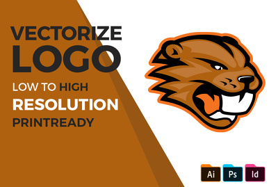 Do manual vector tracing, retrace and redraw your logo