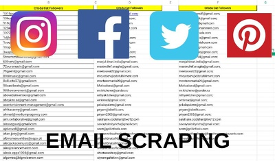 Do email extraction,email list(1000mails),web scraping,data