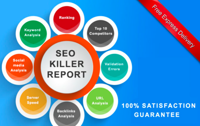 create professional SEO report within 48 hours